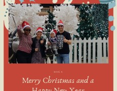 Frohe Weihnachten und erfolgreiches Jahr 2021